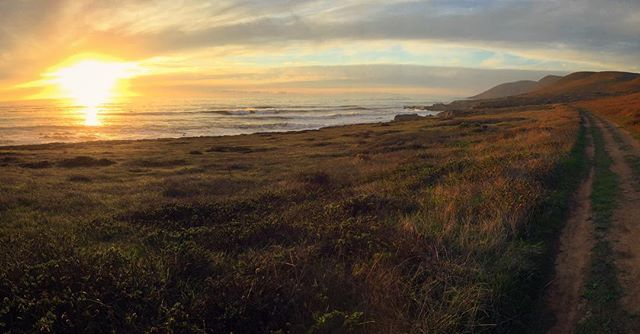 Still enjoying nature's colors all along the central coast. The surf has been large this year and we are lulled to sleep by the crashing waves each night.