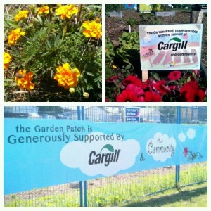 Cargill Banner