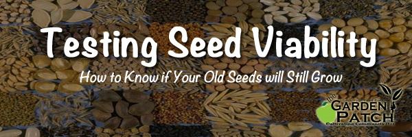 seedsbanner