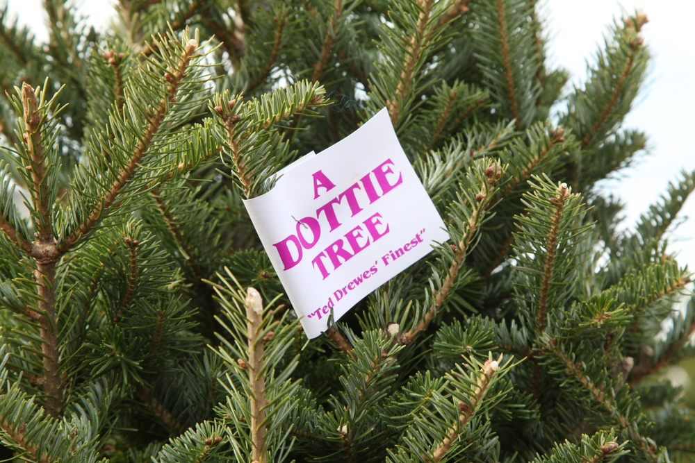 Dottie Tree Tag.jpg