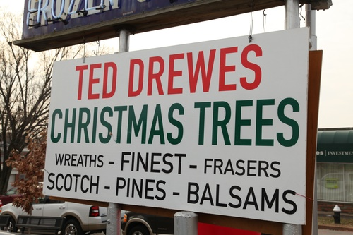 Trees — Ted Drewes Frozen Custard