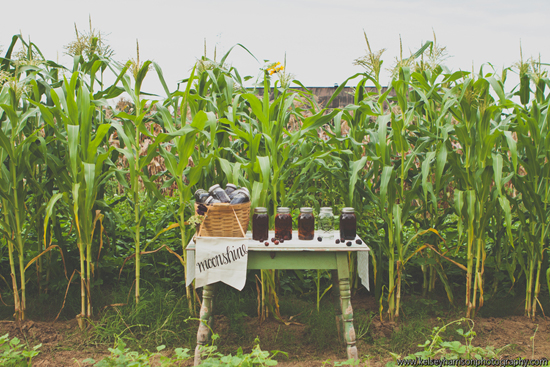 farm_to_table_17.jpg