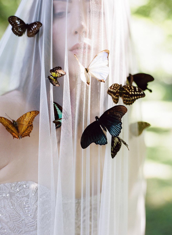 0_Entomology318.jpg