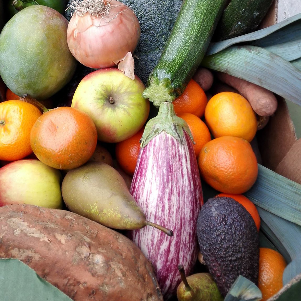 Clean Food, Clean Delivery Order a Veg Box today and receive an impressive amount of beautiful produce, delivered to your door by the first Bristol company to use electric vans! Chose from our range of boxes, add in any extra fruit, vegetables, eggs, bread or groceries to your order, or create your own from scratch!
