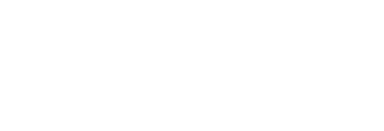 Healthy Balance Dog Treats