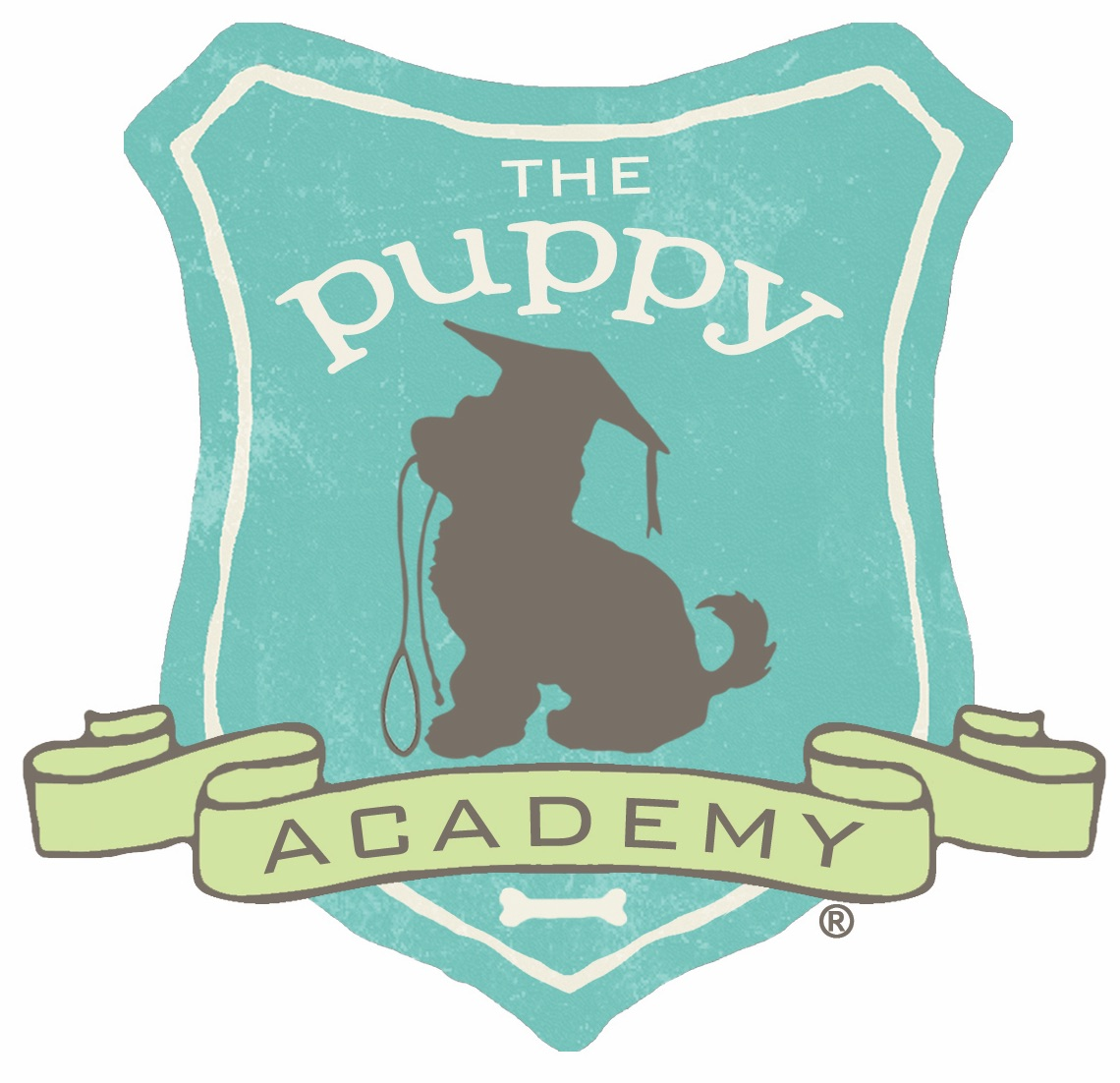 The Puppy Academy