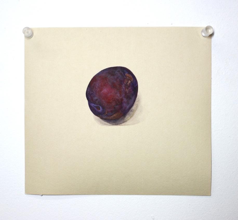 whole plum.JPG