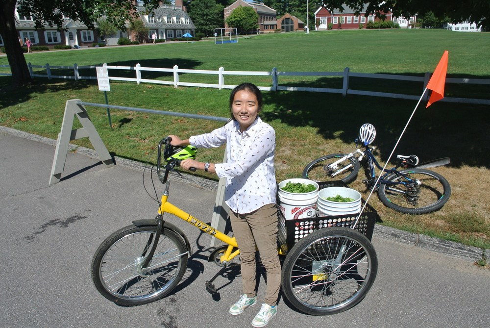The Green Team provides the opportunity for student-driven sustainability initiatives as seen above with Qianyi Zhang transporting food scraps to the school compost site.