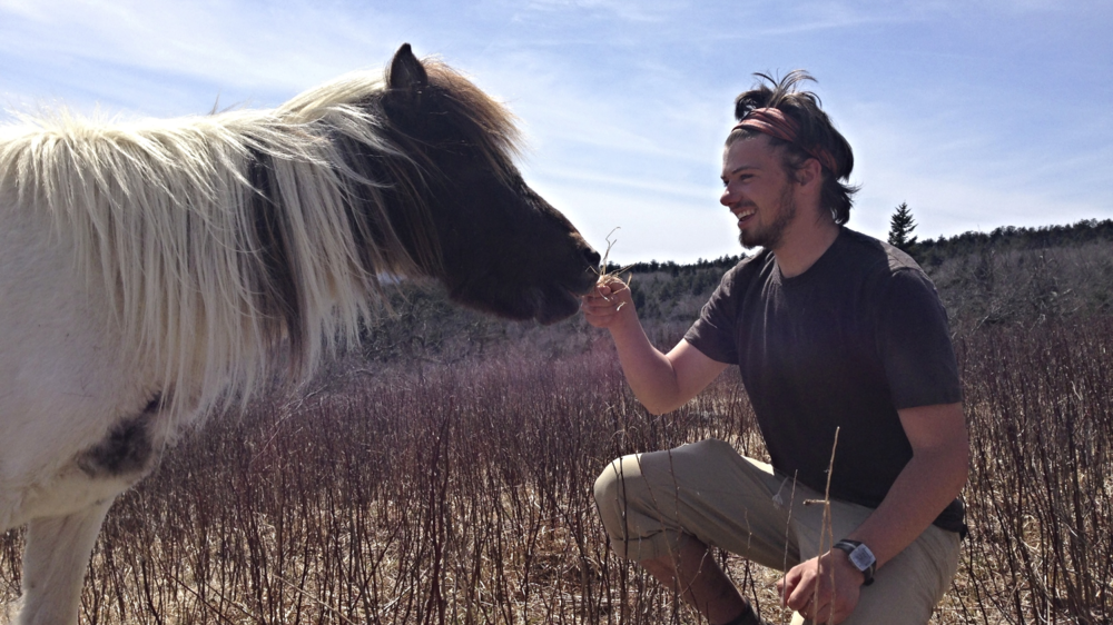 Makings friends with wild ponies at Grayson Highlands State Park, VA.