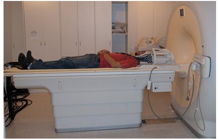 fMRI MEG 1.PNG