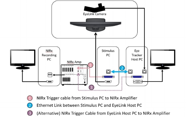 Synchronization of NIRx and SR Resaearch devices