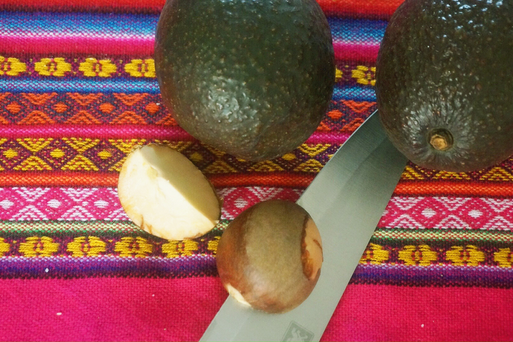 Avocado pit seed
