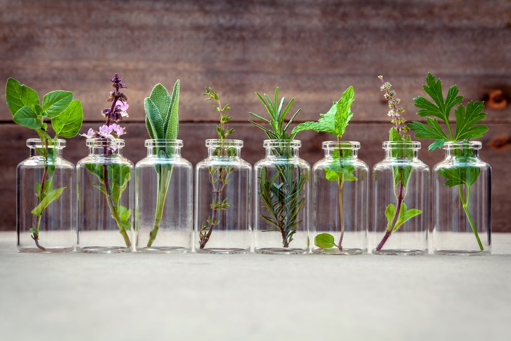 Level One Certification: Foundations of Aromatherapy