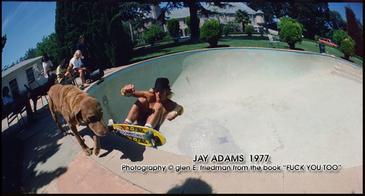 fyt_jay-adams-dog-bowlcgef.jpg