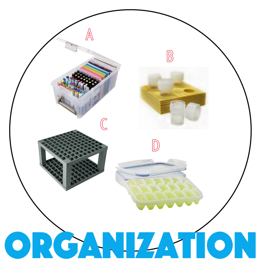 10-Organization-Site.png