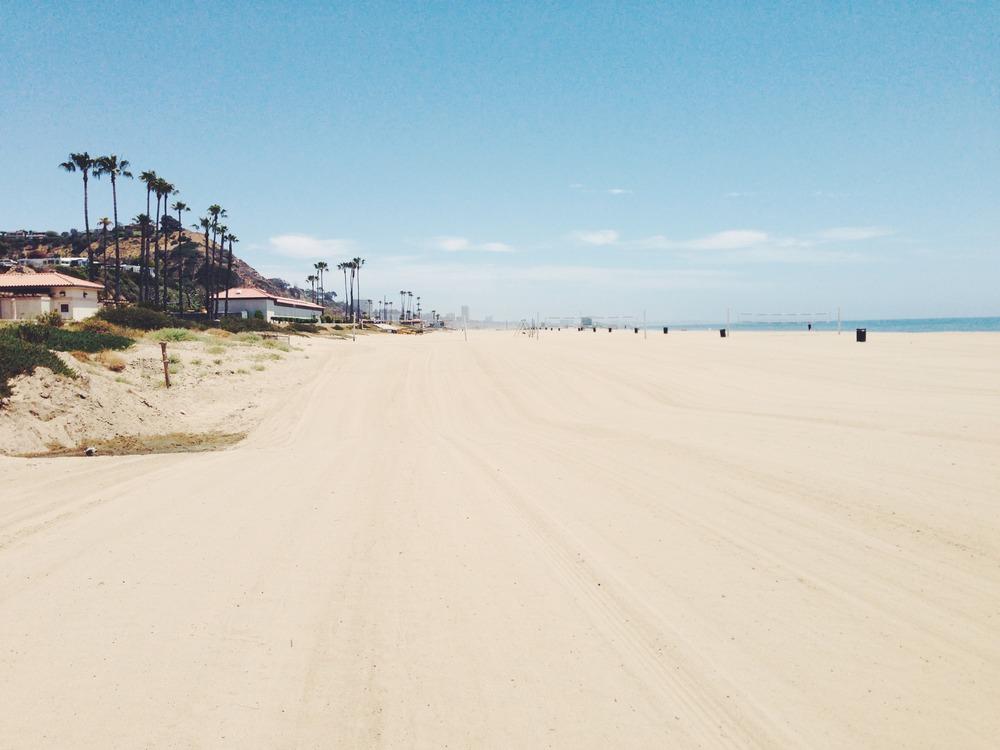 beach-tracks.JPG