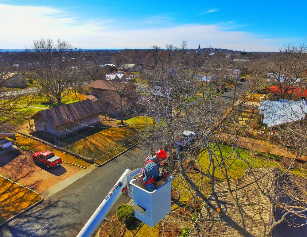 Aerial shot of foreman, Josh Grandstaff, trimming a Pecan tree.