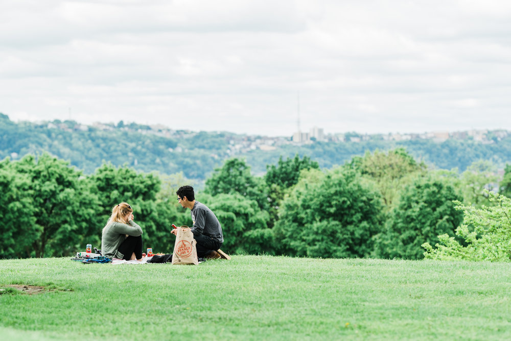Schenley Park Surprise Proposal