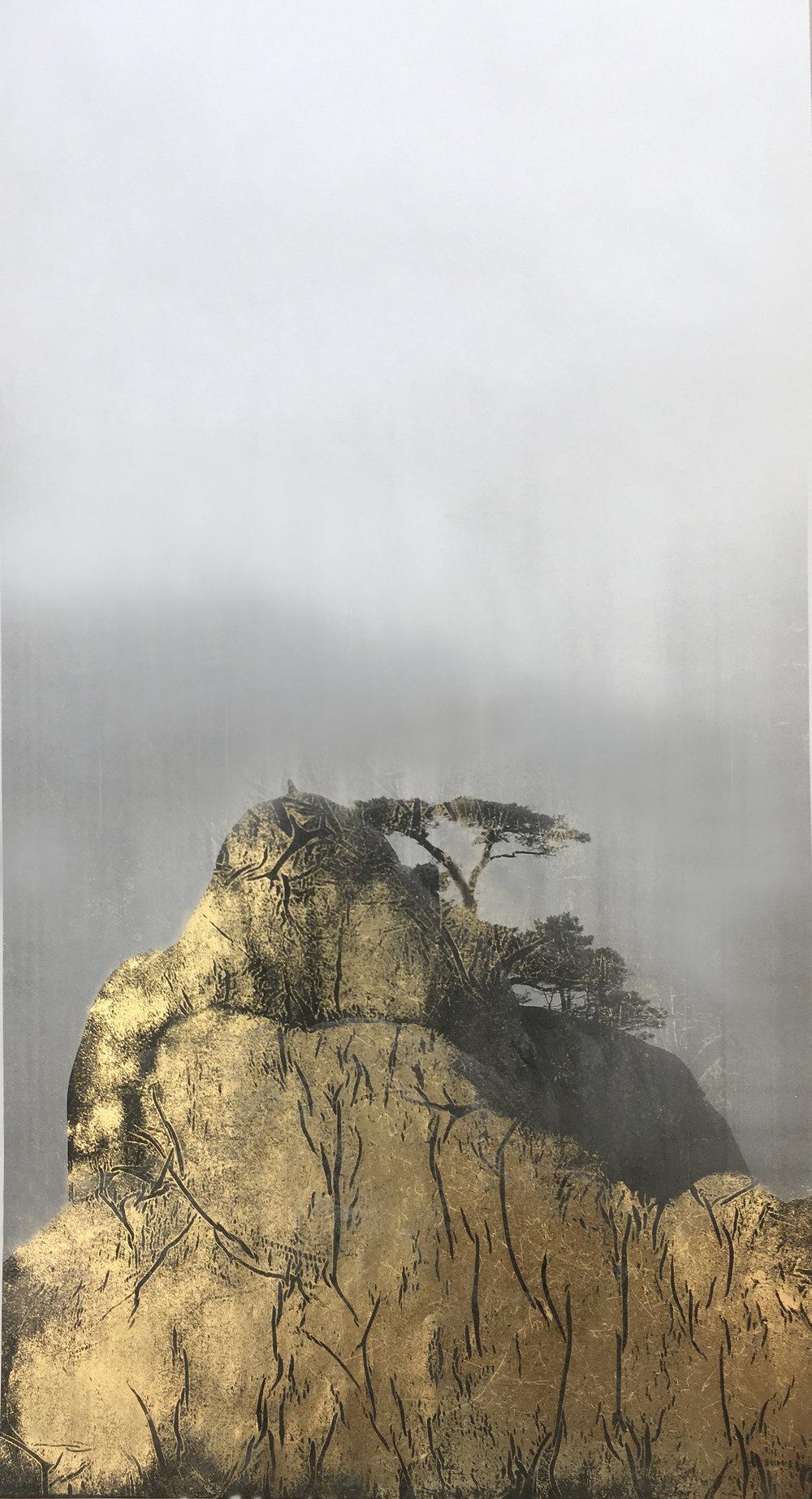 Huangshan Pines