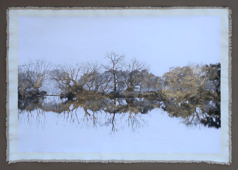 Tree Silhouette West Lake I
