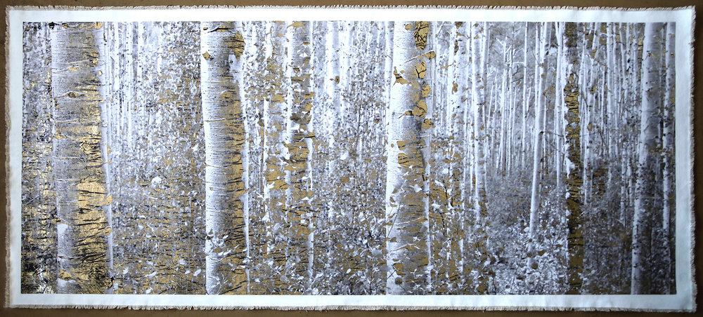 Aspen Forest Maroon Bells I LIGHTER.jpg