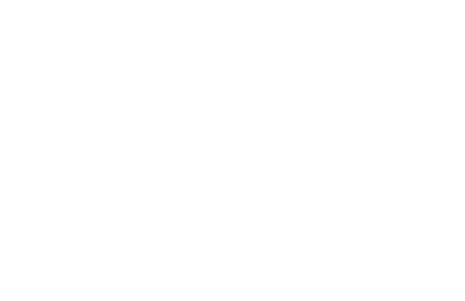 THE WAY BRAND