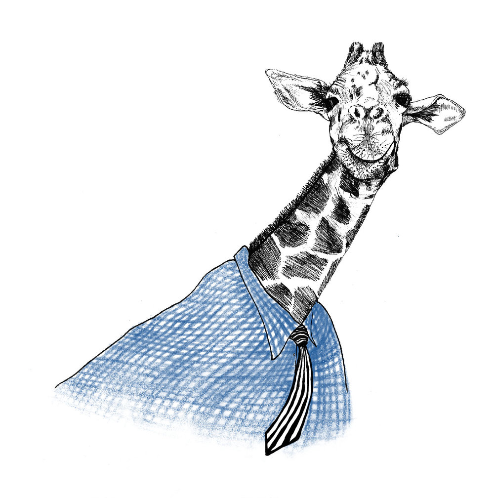 GiraffeSKBK.jpg