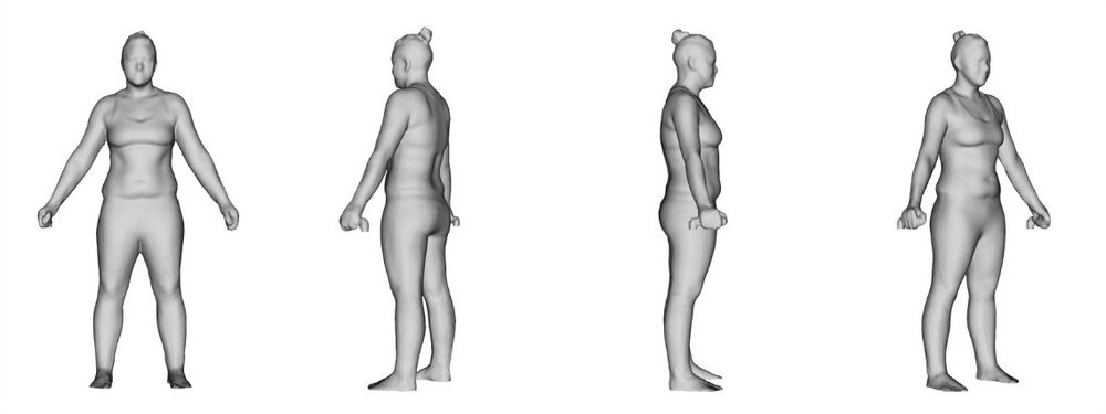 3D Scan Image Example