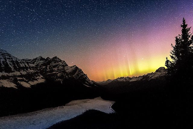 My happy place. #canadianrockies #peytolake #northernlights