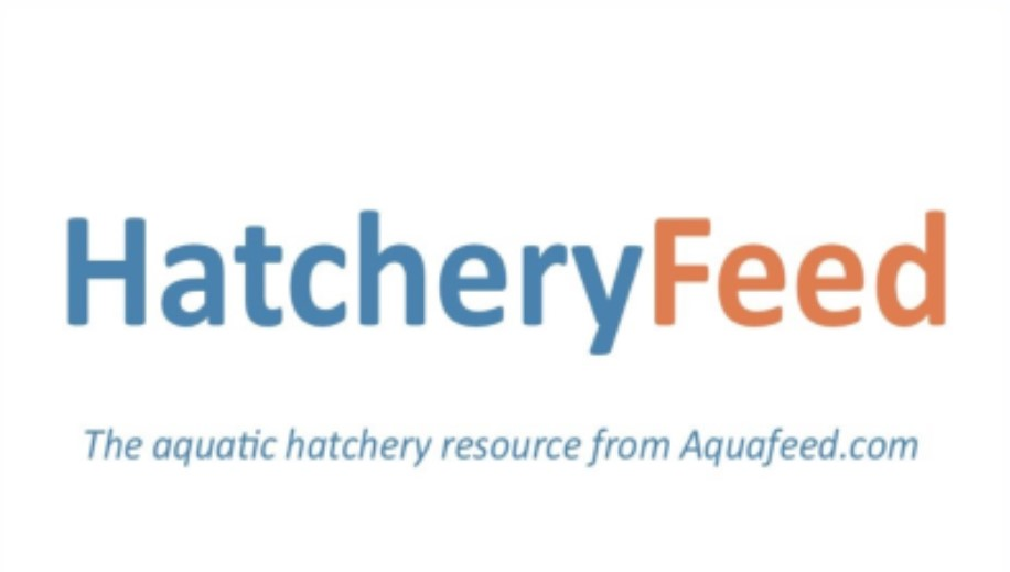 Hatchery Feed logo borderless.jpg