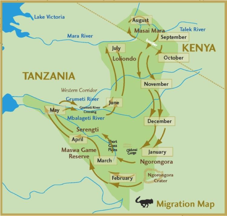 Track The Wildebeest Migration On Google Maps FAIR TRADE SAFARIS - Kenya rivers map