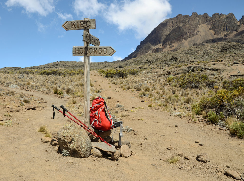 Mt. Kilimanjaro 4.jpg