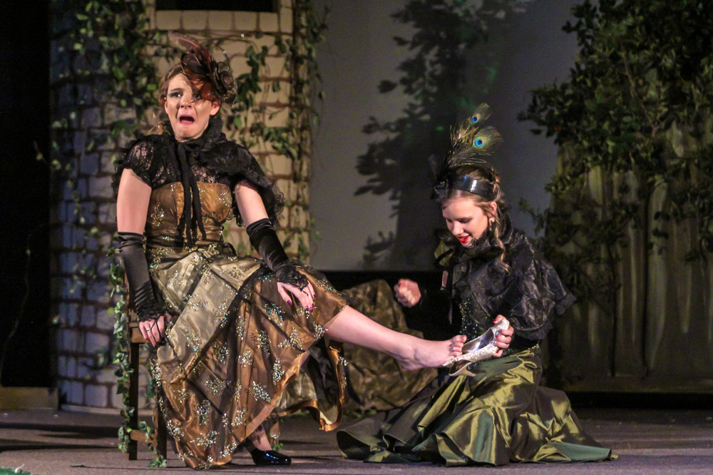 Into the Woods 20160127 0117.jpg