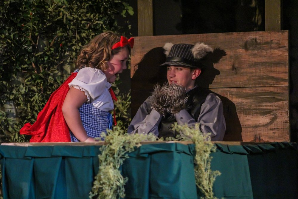 Into the Woods 20160127 0321.jpg