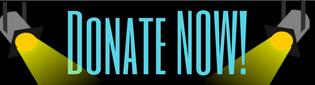 New Lighting Donate.png
