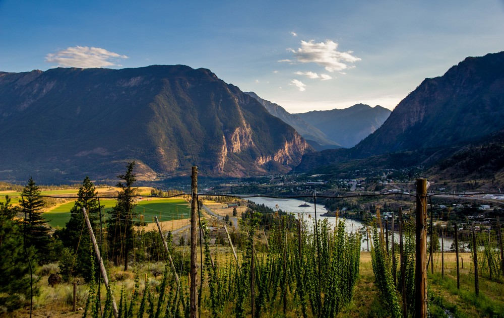 We were greeted with this spectacular view over the hops and Lillooet - and found it hard to believe it was ours for the rest of the month.