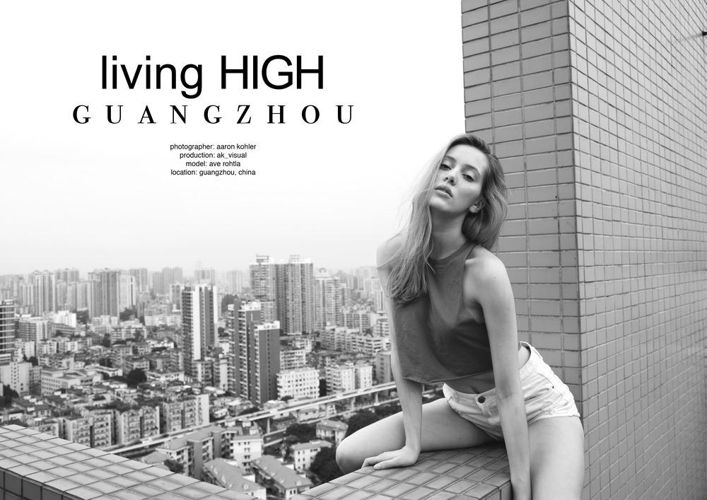 living high6.jpg