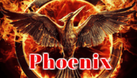 how to install kodi add on phoenix -MAY HAVE BOXING