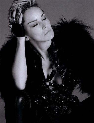 Sharon-Stone_Vogue-Spain_Alix-Malka_Barbara-Baumel_11.jpg