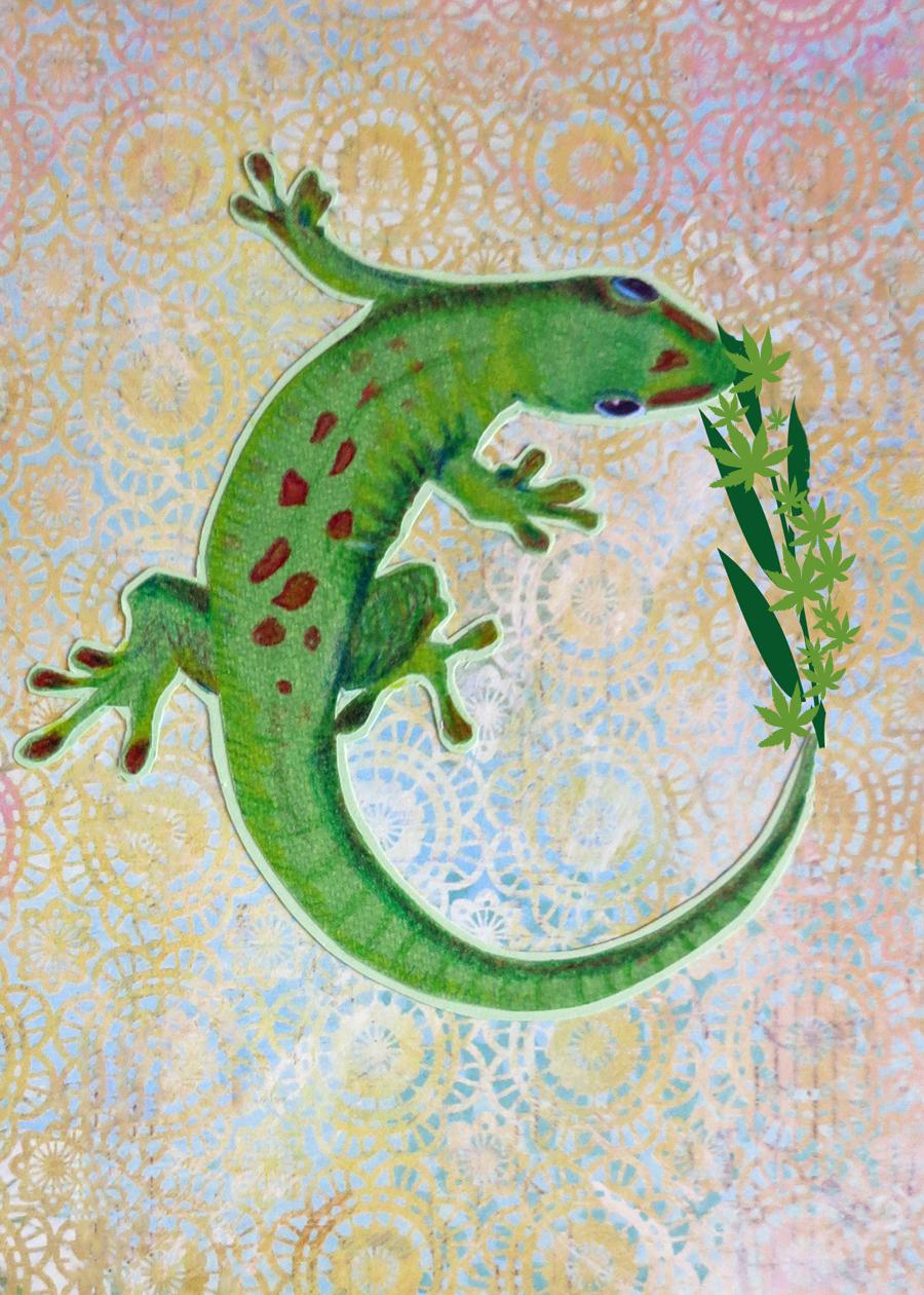 Letter O Gecko