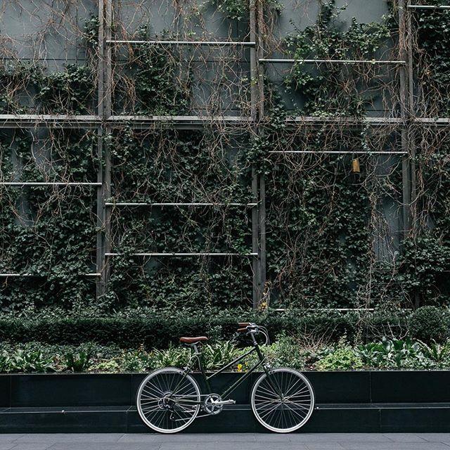 FLYTTESALG! Bygget der vi har sykkellager skal rives, og vi sliter allerede med plassen. Derfor flytter vi om noen ukers tid ut av lokalet og leter etter nytt. I den forbindelse har vi gode priser på flere populære modeller. Se Dapper.no eller ta turen innom Markveien 51. Prisene gjelder så lenge lageret rekker. Velkommen innom i Markveien for nytt konsept senere i år. #sykkel #Tokyobike #flyttesalg #salg