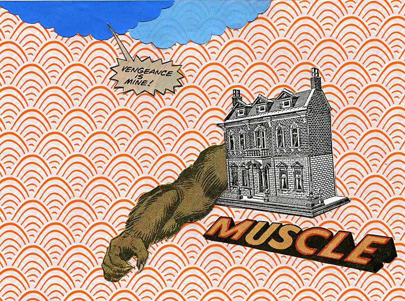 MUSCLE_web.jpg