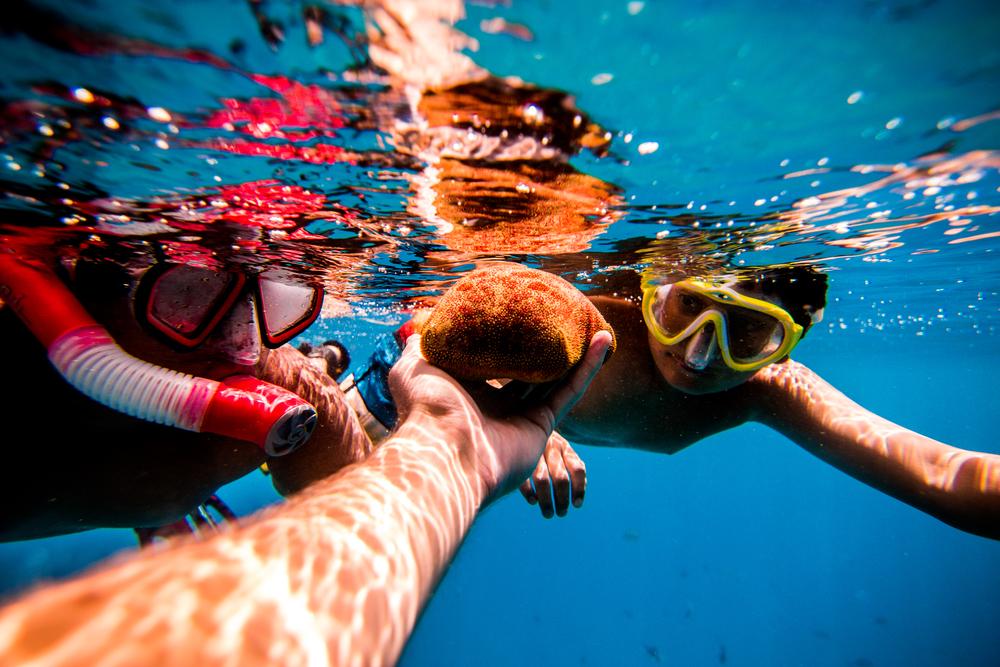 family snorkeling.jpg