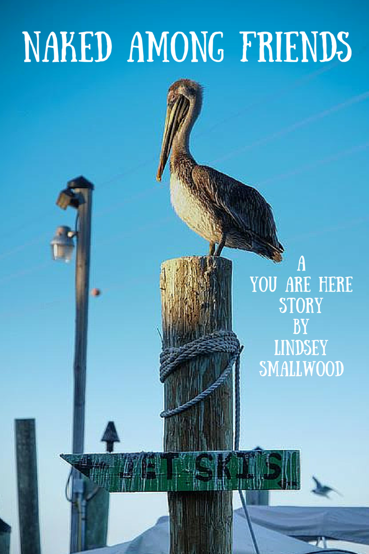 Pelican photo by Lars Plougmann, Edited by Lindsey Smallwood