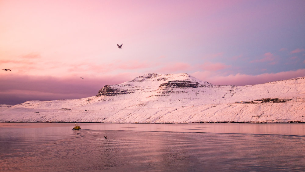 faroe-island-travel-michael-gill-photography-4.jpg