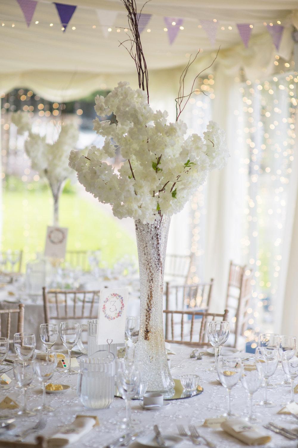 Michael Gill Photography Ramelton Wedding Beech HIll 11.JPG
