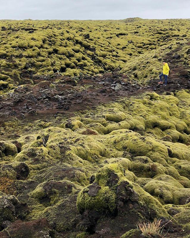 Landscapes that feel like another planet #lavawalk #Iceland #icelandtravel #landscape #instatravel