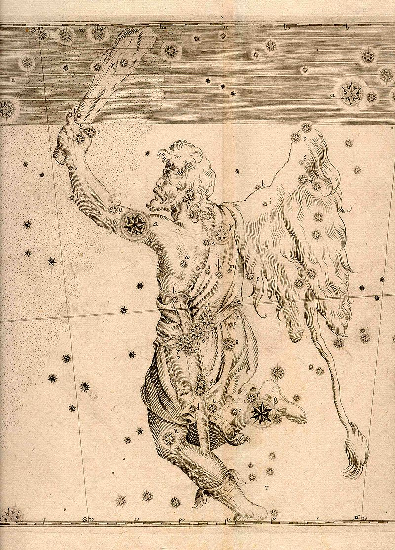 The Constellation Orion from Bayer's sky atlas of 1603. Note the alpha star (Betelgeuse) and beta star (Rigel).