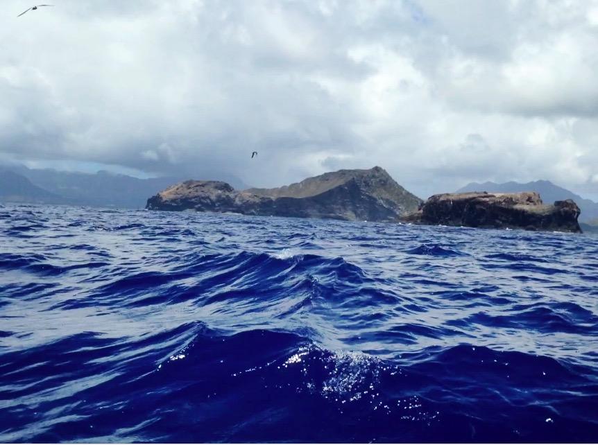 Approaching Bird Island