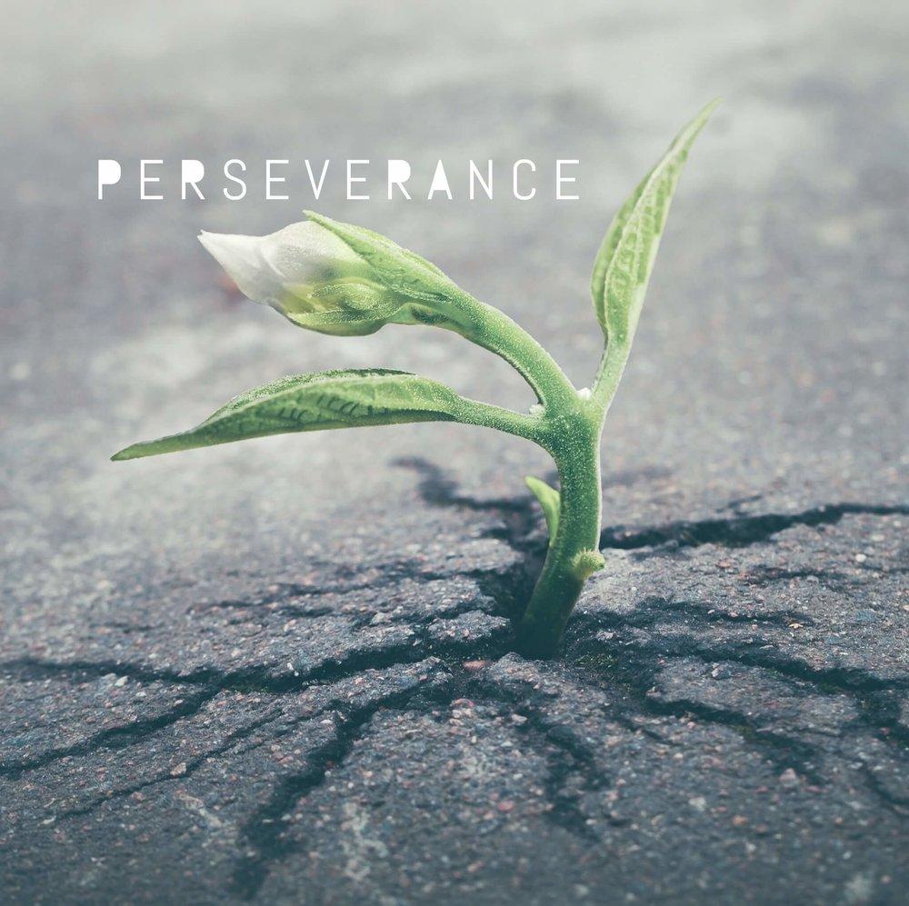 perseverance_Strength.jpg